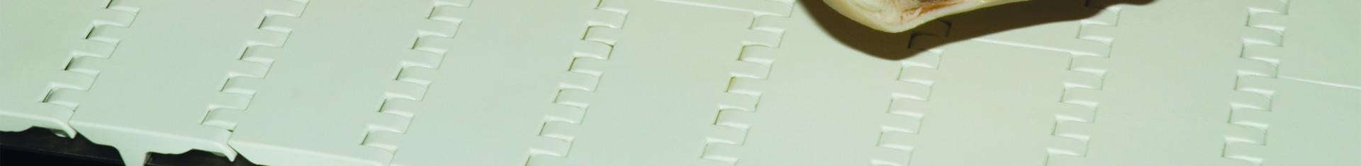 Dyno-Conveyors-Intralox-Meat-Tough-Belt-Banner.jpg